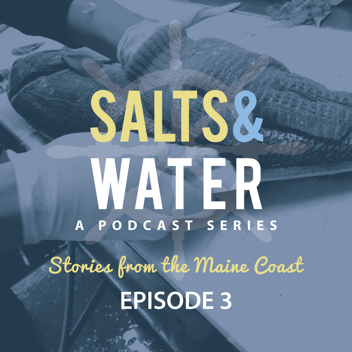 SALTS-AND-WATER-EPISODE-3